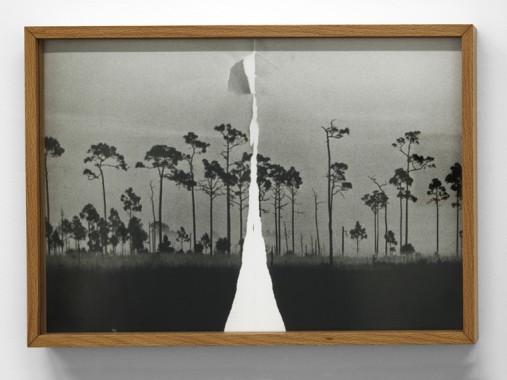 Antonio Rovaldi_Torn Landscape America